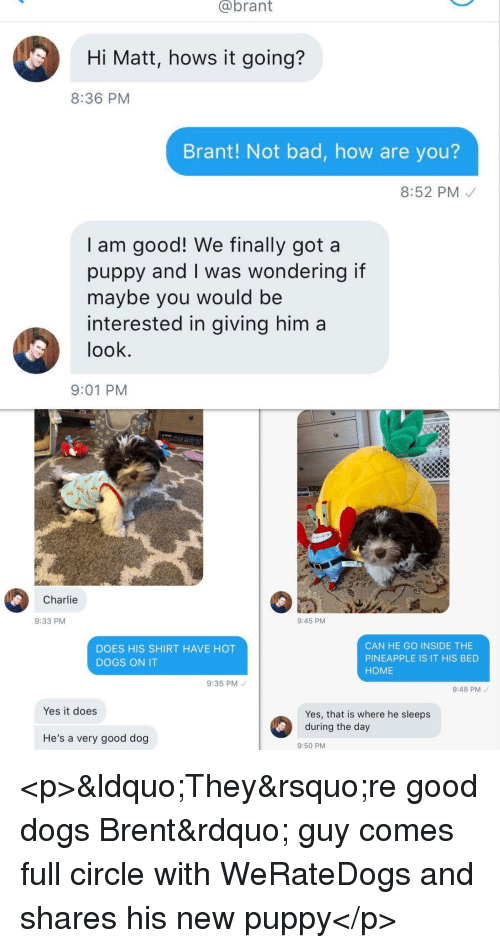 "Bad, Charlie, and Dogs: @brant  Hi Matt, hows it going?  8:36 PM  Brant! Not bad, how are you?  8:52 PM  I am good! We finally got a  puppy and I was wondering if  maybe you would be  interested in giving him a  look  9:01 PM  Charlie  9:33 PM  9:45 PM  DOES HIS SHIRT HAVE HOT  DOGS ON IT  CAN HE GO INSIDE THE  PINEAPPLE IS IT HIS BED  HOME  9:35 PM  9:48 PM  Yes it does  Yes, that is where he sleeps  He's a very good dog  9:50 PM <p>""They're good dogs Brent"" guy comes full circle with WeRateDogs and shares his new puppy</p>"