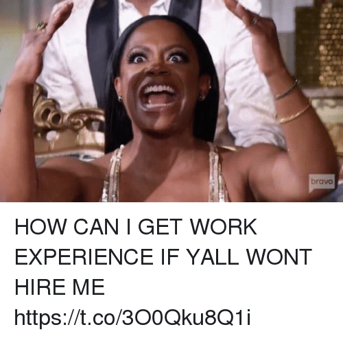 Funny, Work, and Bravo: bravo HOW CAN I GET WORK EXPERIENCE IF YALL WONT HIRE ME https://t.co/3O0Qku8Q1i