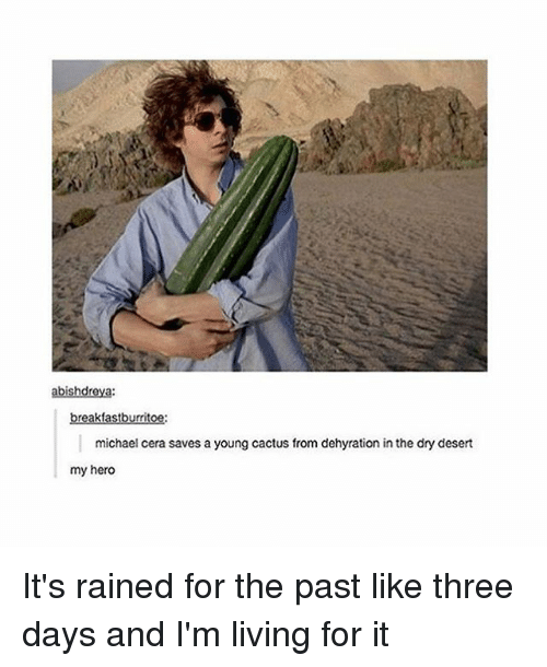 Memes, Michael Cera, and Michael: breakfastburritoe:  michael cera saves a young cactus from dehyration in the dry desert  my hero It's rained for the past like three days and I'm living for it