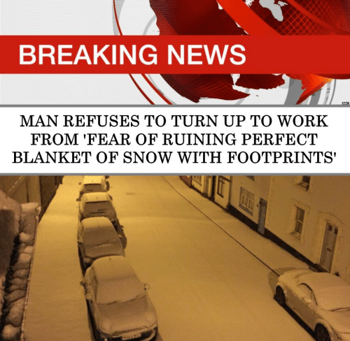 News, Turn Up, and Work: BREAKING NEWS  BBC  MAN REFUSES TO TURN UP TO WORK  FROM 'FEAR OF RUINING PERFECT  BLANKET OF SNOW WITH FOOTPRINTS