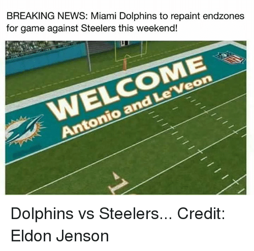 breaking news miami dolphins to repaint endzones for game against 4764543 ✅ 25 best memes about miami dolphin miami dolphin memes