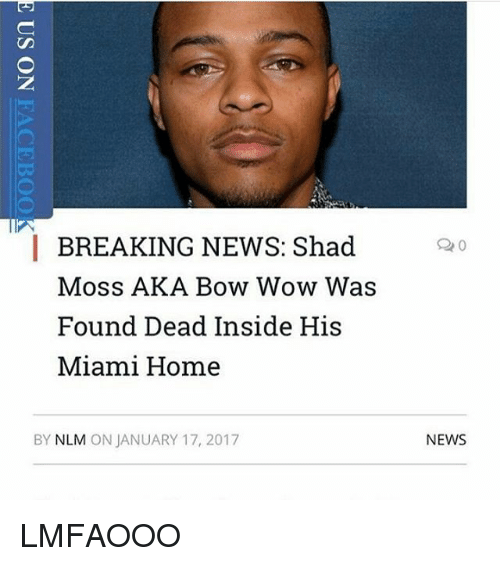 breaking news shad moss aka bow wow was found dead 14757461 breaking news shad moss aka bow wow was found dead inside his,Bow Wow Meme