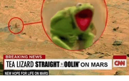 Life, News, and Break: BREAKING NEWS  TEA LIZARD STRAIGHT BOOLIN' ON MARS CNN  NEW HOPE FOR LIFE ON MARS