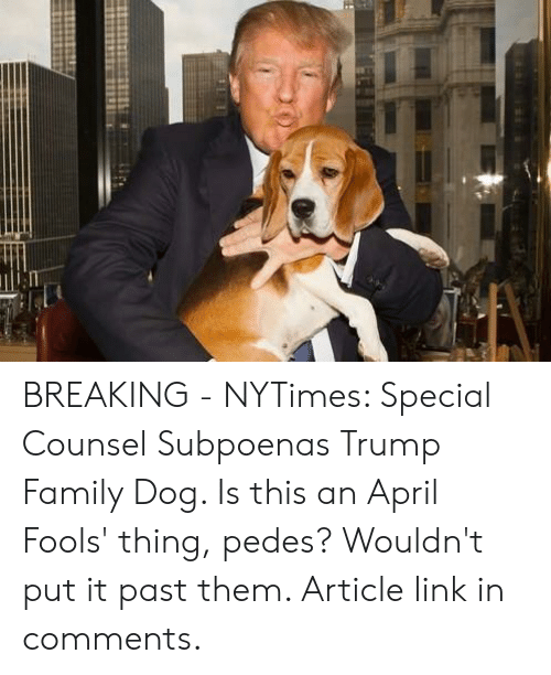 Family, Link, and Nytimes: BREAKING - NYTimes: Special Counsel Subpoenas Trump Family Dog. Is this an April Fools' thing, pedes? Wouldn't put it past them. Article link in comments.
