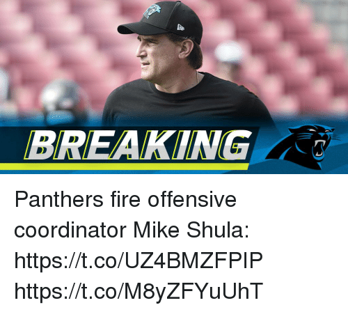 Fire, Memes, and Panthers: BREAKING Panthers fire offensive coordinator Mike Shula: https://t.co/UZ4BMZFPIP https://t.co/M8yZFYuUhT