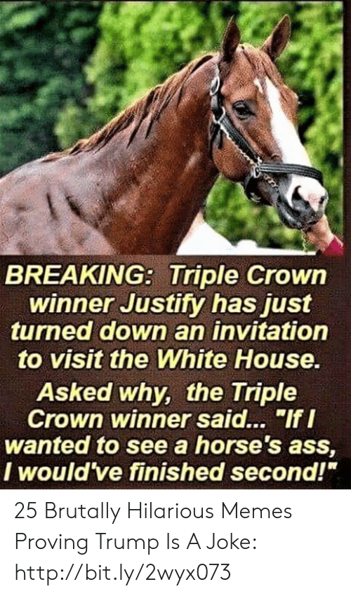 "Ass, Horses, and Memes: BREAKING: Triple Crowin  winner Justity has just  turned down an invitation  to visit the White House  Asked why, the Triple  Crown winner said... ""If I  wanted to see a horse's ass,  I would ve finished second!"" 25 Brutally Hilarious Memes Proving Trump Is A Joke: http://bit.ly/2wyx073"