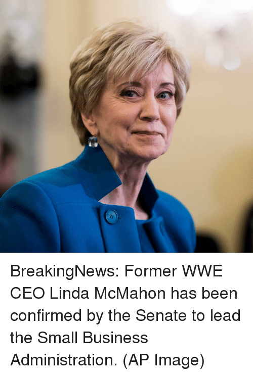 Memes, 🤖, and Ceo: BreakingNews: Former WWE CEO Linda McMahon has been confirmed by the Senate to lead the Small Business Administration. (AP Image)