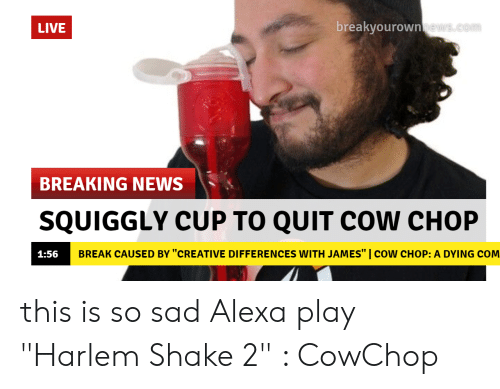 Breakyourown LIVE BREAKING NEWS 、 SQUIGGLY CUP TO QUIT COW