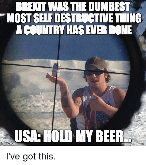 Beer, Politics, and Got: BREITWAS THE DUMBEST  TMOSTSELFDESTRUCTIVETHING  ACOUNTRY HAS EVER DONE  USA: HOLD MY BEER  imglip com I've got this.