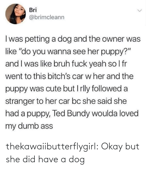 """Bruh, Cute, and Dumb: Bri  @brimcleann  I was petting a dog and the owner was  like """"do you wanna see her puppy?""""  and I was like bruh fuck yeah so I fr  went to this bitch's car w her and the  puppy was cute but I rlly followed a  stranger to her car bc she said she  had a puppy, Ted Bundy woulda loved  my dumb ass thekawaiibutterflygirl:  Okay but she did have a dog"""