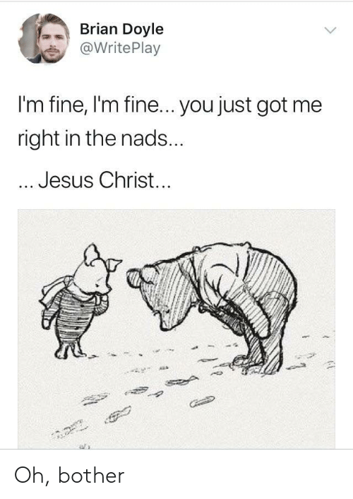 Jesus, Got, and Jesus Christ: Brian Doyle  @WritePlay  I'm fine, I'm fine... you just got me  right in the nads  Jesus Christ Oh, bother