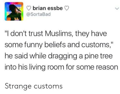 "Funny, Tree, and Living: brian ess  @SortaBad  beCV  ""I don't trust Muslims, they have  some funny beliefs and customs,""  he said while dragging a pine tree  into his living room for some reason Strange customs"