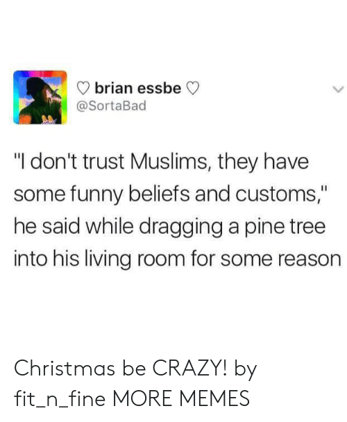 "Christmas, Crazy, and Dank: brian essbe  @SortaBad  ""I don't trust Muslims, they have  some funny beliefs and customs,""  he said while dragging a pine tree  into his living room for some reason Christmas be CRAZY! by fit_n_fine MORE MEMES"
