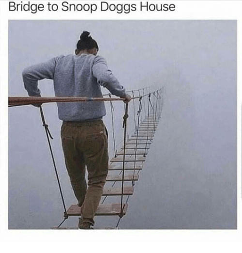 Memes, Snoop, and House: Bridge to Snoop Doggs House