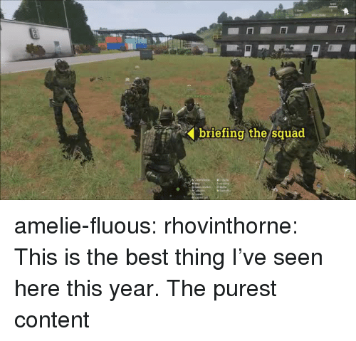 Squad, Tumblr, and Best: briefing the/squad  ' amelie-fluous:  rhovinthorne:  This is the best thing I've seen here this year.   The purest content