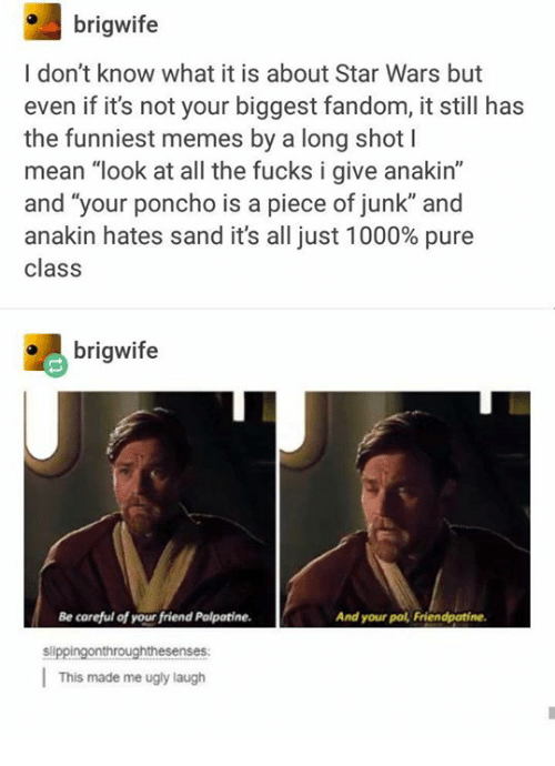 """Memes, Star Wars, and Ugly: brigwife  I don't know what it is about Star Wars but  even if it's not your biggest fandom, it still has  the funniest memes by a long shot l  mean """"look at all the fucks i give anakin'""""  and """"your poncho is a piece of junk"""" and  anakin hates sand it's all just 1000% pure  class  brigwife  Be careful of your friend Palpatine.  And your pal, Friendpatine.  slippingonthroughthesenses  This made me ugly laugh"""