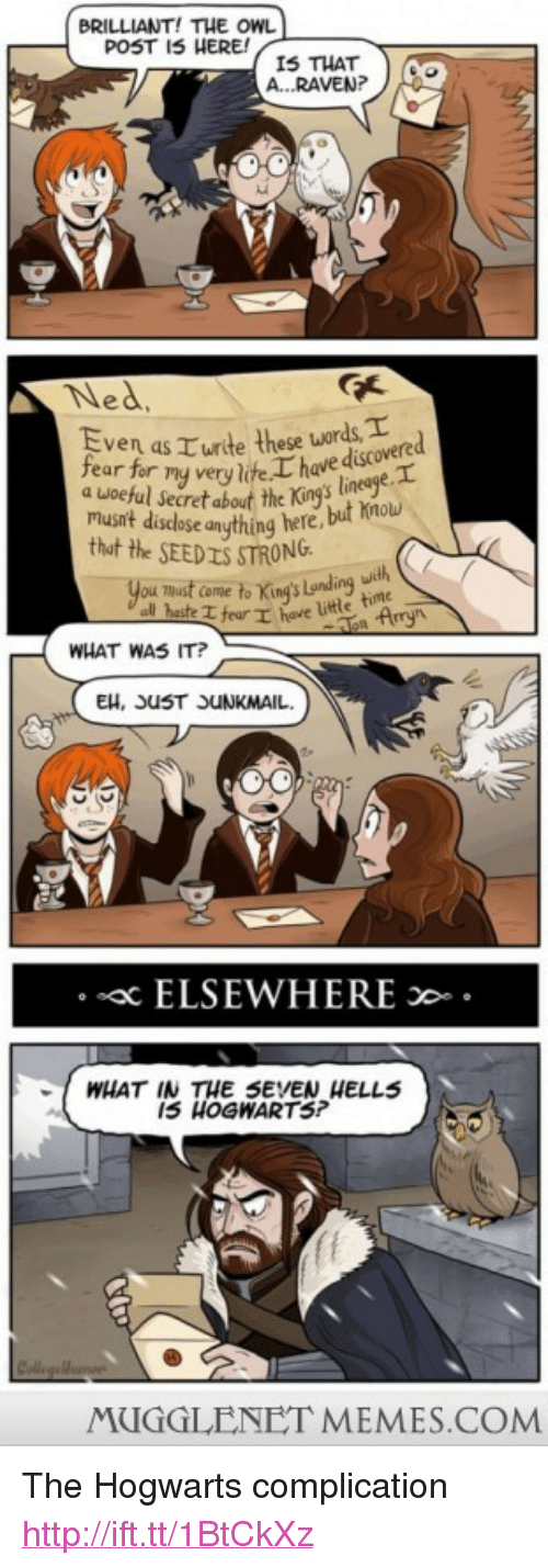 """Memes, Http, and Brilliant: BRILLIANT! THE OwL  POST I5 HERE  IS THAT  RAVEP  Ned  Even as E urte these words  fear for  have discovere  dsecref about the King's linege  musnt disdose anuthing here, but hnou  thut the SEEDIS STRONG  you mut come to King's  Landing  wde  uith  WHAT WAS IT?  EH, UST UNKMAIL  sac ELSEWHERE  I5 HOGWARTS?  MUGGLENET MEMES.COM <p>The Hogwarts complication <a href=""""http://ift.tt/1BtCkXz"""">http://ift.tt/1BtCkXz</a></p>"""
