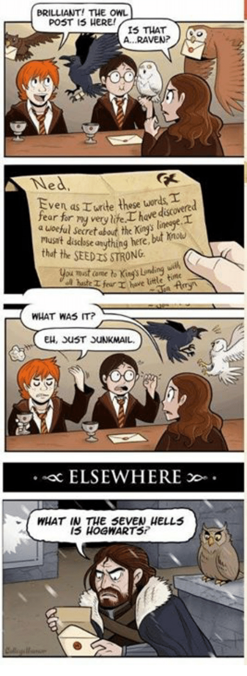 Memes, Raven, and Ravens: BRILLIANT! THE OWL  POST IS HERE!  IS THAT  A. RAVEN?  Ned  fear for  must disclose anything here  that the SEEDISSTRONG  title time  WHAT WAS IT?  EH, StuST JUNKMAIL.  ELSEWHERE  WHAT IN THE SEVEN HELLS  15 HOGNARTS