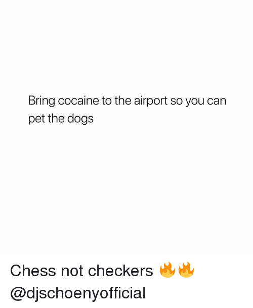 Dogs, Memes, and Chess: Bring cocaine to the airport so you can  pet the dogs Chess not checkers 🔥🔥 @djschoenyofficial