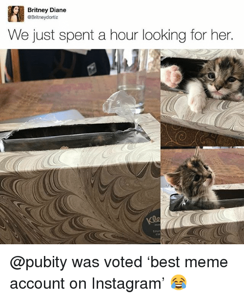 Instagram, Meme, and Memes: Britney Diane  @Britneydortiz  We just spent a hour looking for her.  tru @pubity was voted 'best meme account on Instagram' 😂