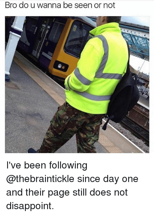 Memes, Been, and 🤖: Bro do u wanna be seen or not I've been following @thebraintickle since day one and their page still does not disappoint.