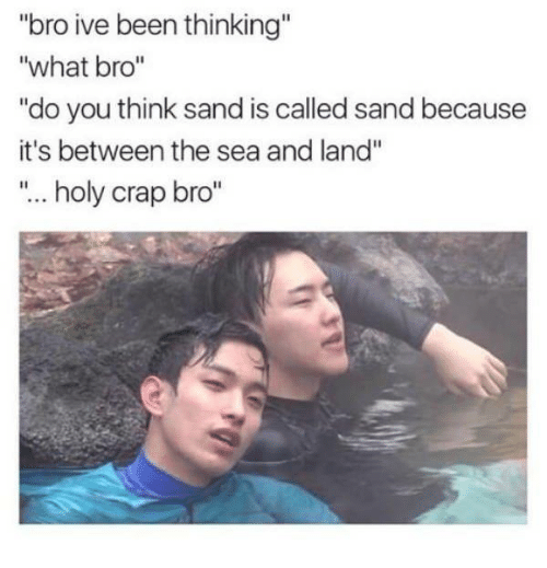 "Dank, Been, and 🤖: ""bro ive been thinking  what bro  ""do you think sand is called sand because  it's between the sea and land""  holy crap bro"