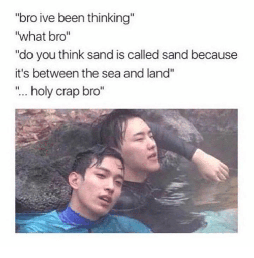 "Memes, Been, and 🤖: ""bro ive been thinking""  ""what bro""  ""do you think sand is called sand because  it's between the sea and land""  ""... holy crap bro"""