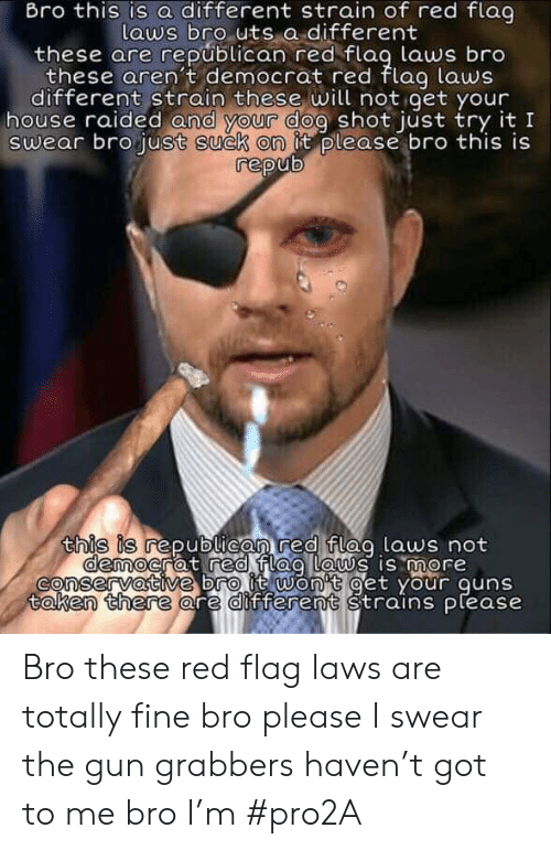 Guns, Taken, and House: Bro this is a different strain of red flag  laws bro uts a different  these are republican red flag laws bro  these arent democrat red flag laws  different strain these will not get your  house raided and your dog shot just try it I  swear bro just suck on it please bro this is  repub  this is republican red flag laws not  democrat red flag Laws is more  onservative bro it won't get your guns  taken there are different strains please Bro these red flag laws are totally fine bro please I swear the gun grabbers haven't got to me bro I'm #pro2A