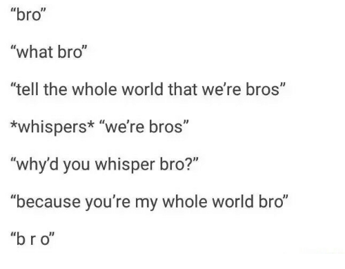 Bro What Bro Tell The Whole World That Were Bros Whispers Were