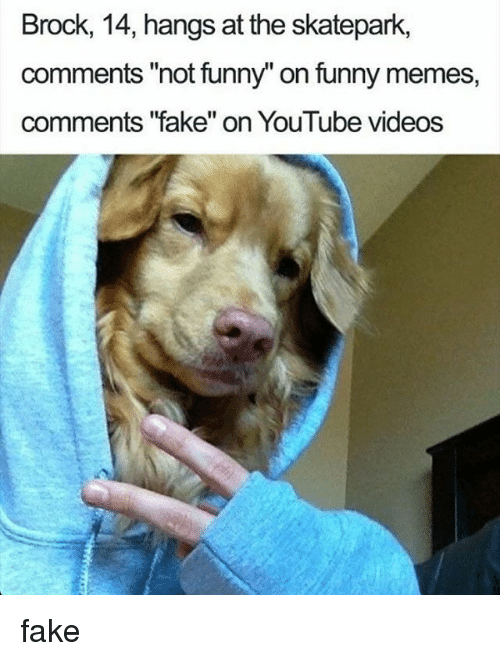 """Fake, Funny, and Memes: Brock, 14, hangs at the skatepark,  comments """"not funny"""" on funny memes,  comments '""""fake"""" on YouTube videos fake"""