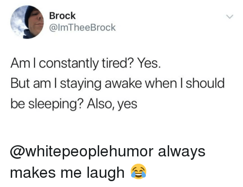 Memes, Brock, and Sleeping: Brock  @lmTheeBrock  Am l constantly tired? Yes.  But am l staying awake when l should  be sleeping? Also, yes @whitepeoplehumor always makes me laugh 😂