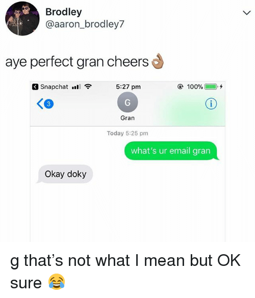 Anaconda, Snapchat, and Email: Brodley  @aaron_brodley7  aye perfect gran cheers  Snapchat .S  5:27 pm  100%(  ),チ  Gran  Today 5:25 pm  what's ur email grarn  Okay doky g that's not what I mean but OK sure 😂