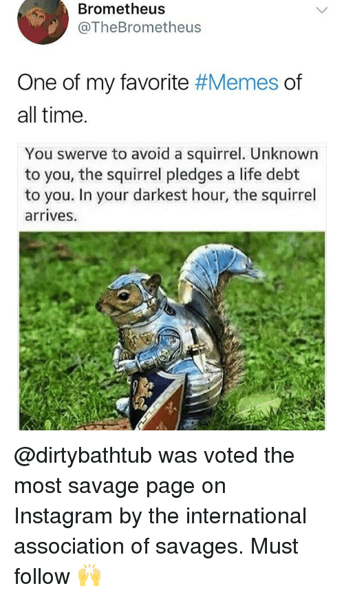 Instagram, Life, and Memes: Brometheus  @TheBrometheus  One of my favorite #Memes of  all time  You swerve to avoid a squirrel. Unknown  to you, the squirrel pledges a life debt  to you. In your darkest hour, the squirrel  arrives. @dirtybathtub was voted the most savage page on Instagram by the international association of savages. Must follow 🙌