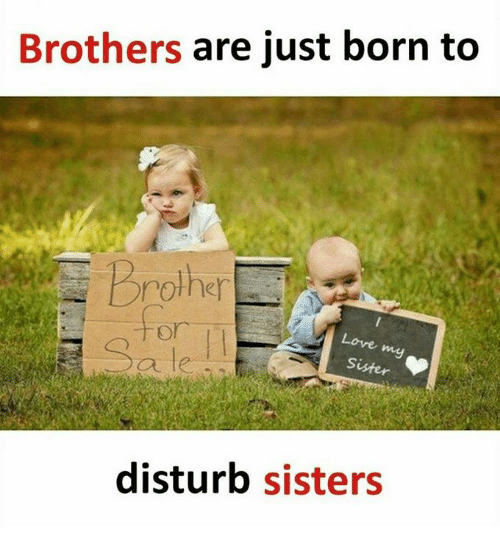 Brothers Are Just Born to Rother for Love Sister Ale Ou
