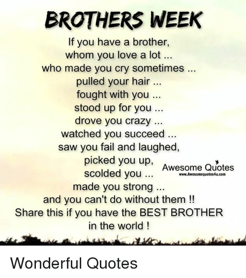 I Love You Little Brother Quotes: BROTHERS WEEK If You Have A Brother Whom You Love A Lot