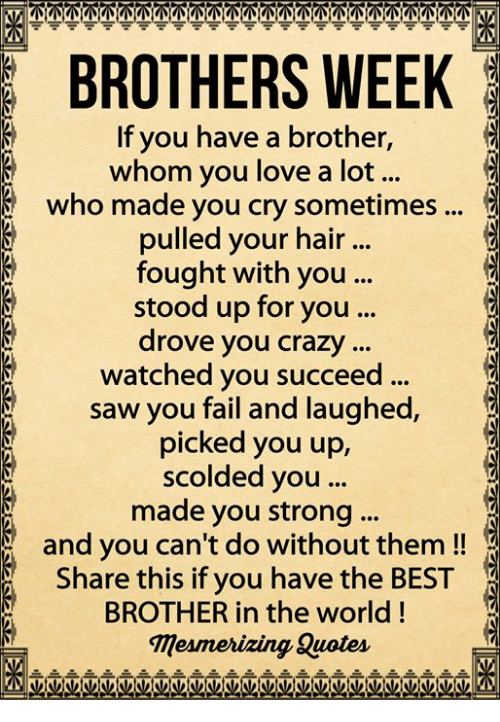 Brothers Week If You Have A Brother Whom You Love A Lot Who Made You