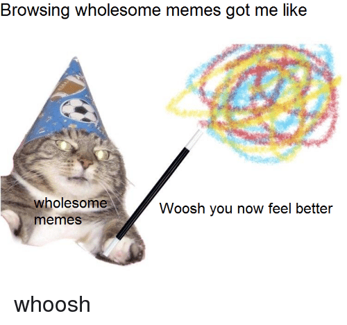 Memes, Wholesome, and Got: Browsing wholesome memes got me like  wholesome  memeS  Woosh you now feel better <p>whoosh</p>