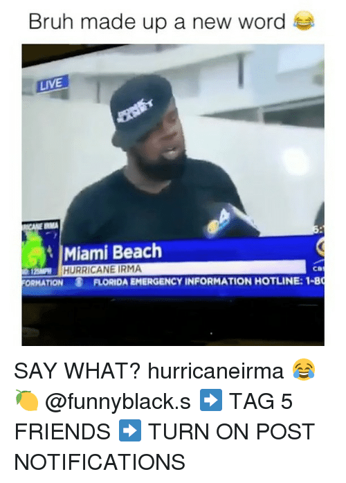 Bruh, Friends, and Beach: Bruh made up a new word  LIVE  Miami Beach  HURRICANE IRMA  12  ORMATION  FLORIDA EMERGENCY INFORMATION HOTLINE: 1-8 SAY WHAT? hurricaneirma 😂🍋 @funnyblack.s ➡️ TAG 5 FRIENDS ➡️ TURN ON POST NOTIFICATIONS