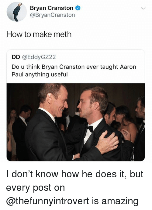 Bryan Cranston, Funny, and Aaron Paul: Bryan Cranston  @BryanCranston  How to make meth  DD @EddyGZ22  Do u think Bryan Cranston ever taught Aaron  Paul anything useful I don't know how he does it, but every post on @thefunnyintrovert is amazing