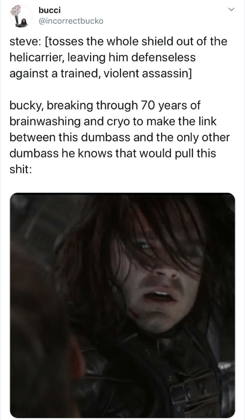 Link, Violent, and The Link: bucci  @incorrectbucko  steve: [tosses the whole shield out of the  helicarrier, leaving him defenseless  against a trained, violent assassin]  bucky, breaking through 70 years of  brainwashing and cryo to make the link  between this dumbass and the only other  dumbass he knows that would pull this  shit: