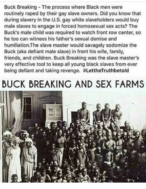 Slave owners homosexual relationships