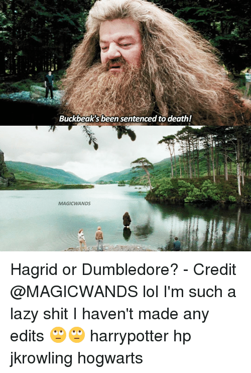 Buckbeak, Memes, and 🤖: Buckbeak's been sentenced to death!  MAGIC WANDS Hagrid or Dumbledore? - Credit @MAGICWANDS lol I'm such a lazy shit I haven't made any edits 🙄🙄 harrypotter hp jkrowling hogwarts