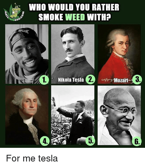 Memes, Weed, and Would You Rather: BUD  WHO WOULD YOU RATHER  SMOKE WEED WITH?  Nikola Tesla  Mozart For me tesla