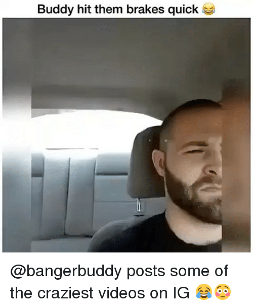Memes, Videos, and 🤖: Buddy hit them brakes quick @bangerbuddy posts some of the craziest videos on IG 😂😳