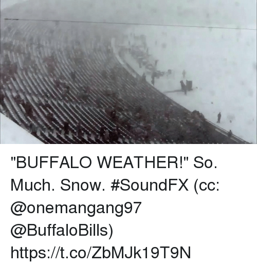 "Memes, Buffalo, and Snow: ""BUFFALO WEATHER!""  So. Much. Snow. #SoundFX (cc: @onemangang97 @BuffaloBills) https://t.co/ZbMJk19T9N"