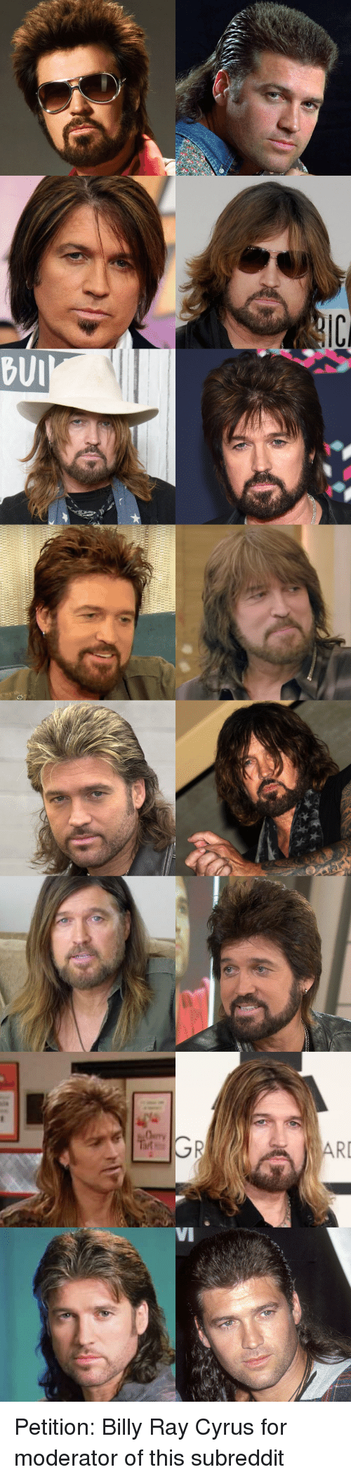 Haircuts, Just Fuck My Shit Up, and Billy Ray: BUI  RI  VI Petition: Billy Ray Cyrus for moderator of this subreddit