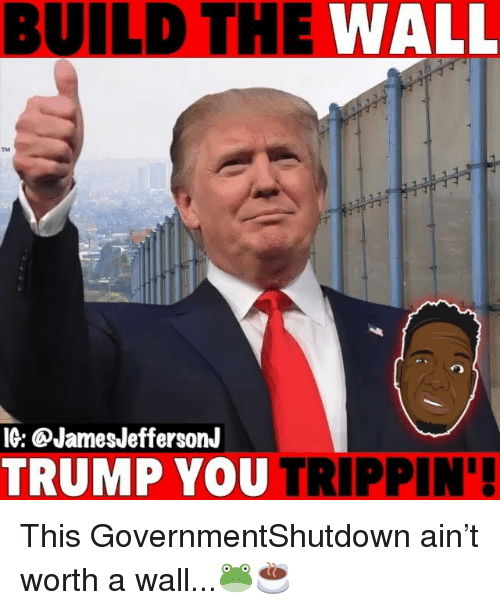 Memes, Trump, and 🤖: BUILD THE WALL  TM  IG: @JamesJeffersonJ  TRUMP YOU TRIPPIN' This GovernmentShutdown ain't worth a wall...🐸☕️