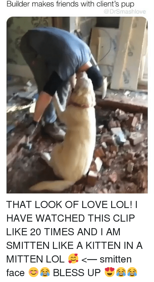 Bless Up, Friends, and Lol: Builder makes friends with client's pup  @DrSmashlove THAT LOOK OF LOVE LOL! I HAVE WATCHED THIS CLIP LIKE 20 TIMES AND I AM SMITTEN LIKE A KITTEN IN A MITTEN LOL 🥰 <— smitten face 😊😂 BLESS UP 😍😂😂