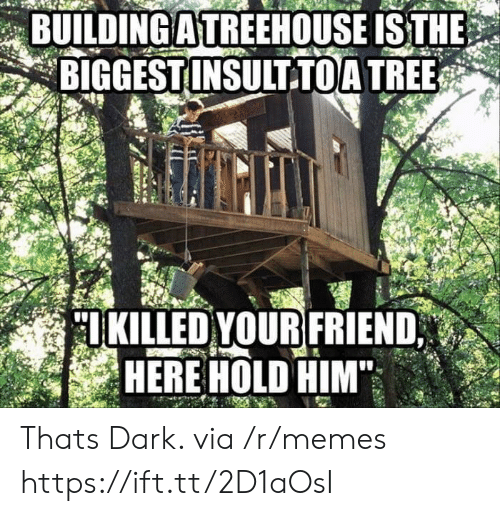 Memes, Tree, and Dark: BUILDING A TREEHOUSE ISTHE  BIGGEST INSULTTOA TREE.  IKILLED YOUR FRIEND  HERE HOLD HIM Thats Dark. via /r/memes https://ift.tt/2D1aOsI