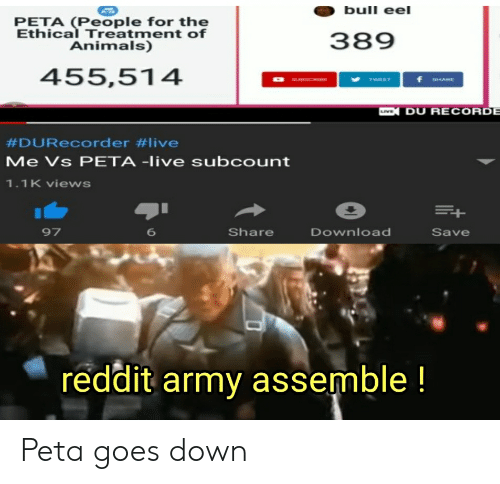 Animals, Reddit, and Peta: bull eel  PETA (People for the  Ethical Treatment of  389  Animals)  455,514  TWEET  DU RECORD  #DURecorder #live  Me Vs PETA -live subcount  1.1 K views  97  Share  Download  Save  6  reddit armv assemble! Peta goes down